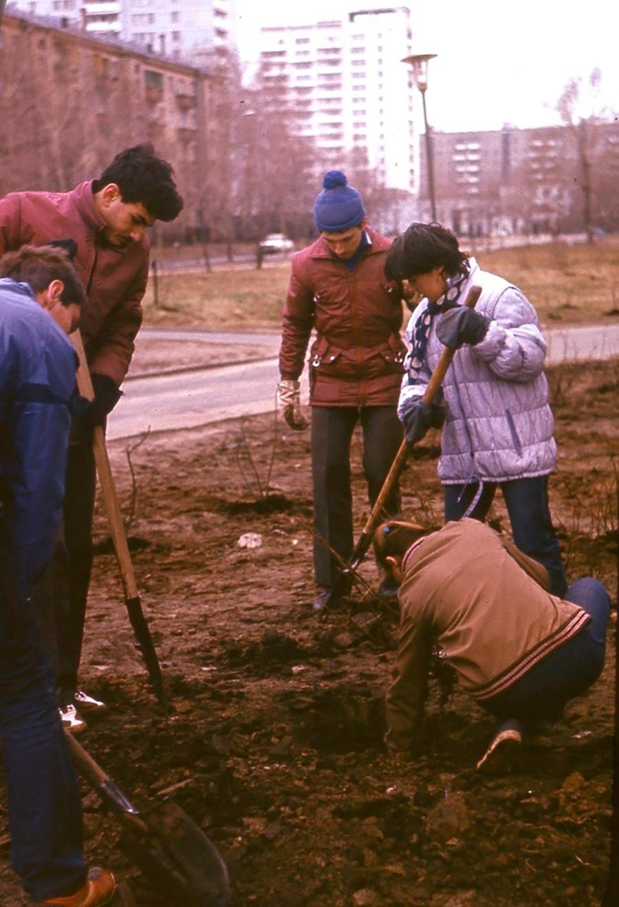 Étudiants de l'Université d'État de Moscou plantant des arbres près de leur résidence universitaire, 1984
