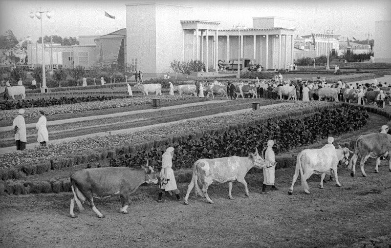 全ソ連農業博覧会