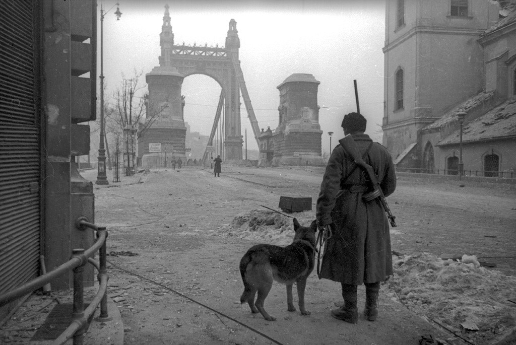 Démineurs sur le Pont des Chaînes à Budapest