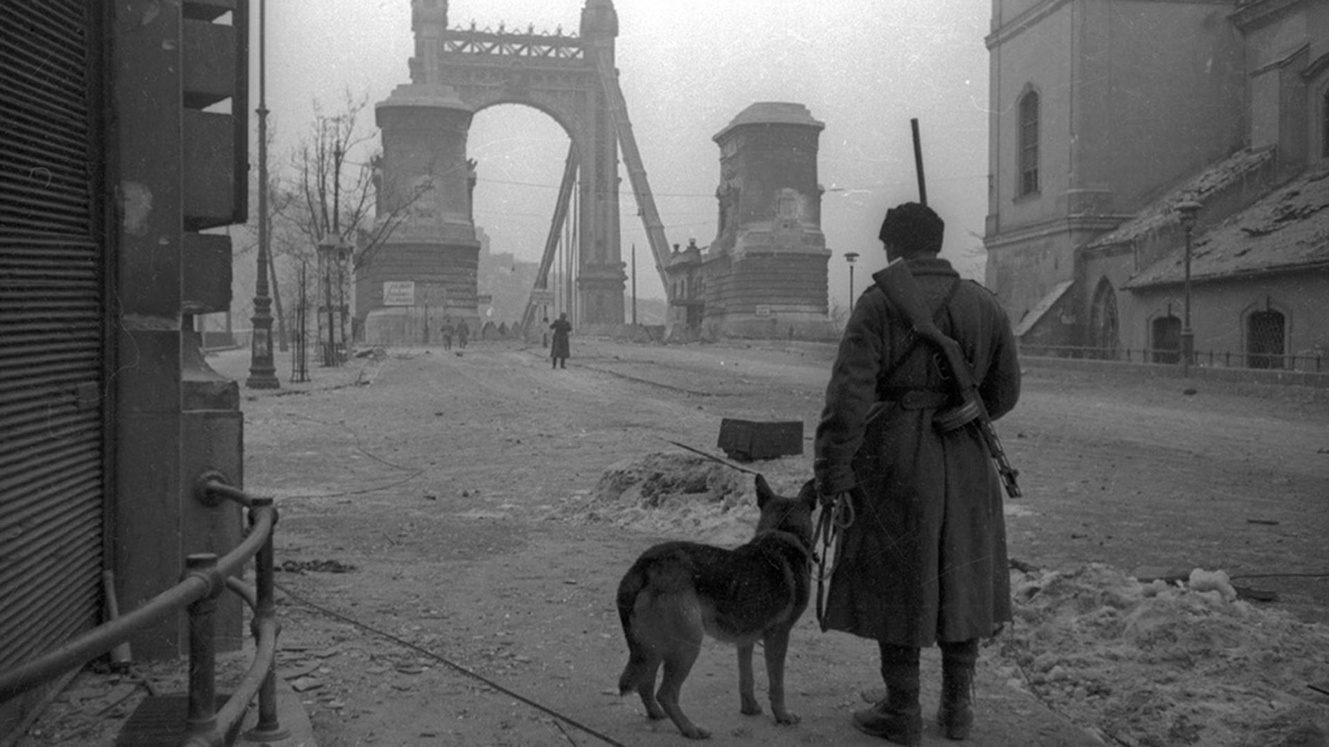 Démineurs au pont Élisabeth à Budapest