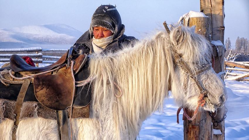 Sibirische Pferdezucht in Ojmjakon.