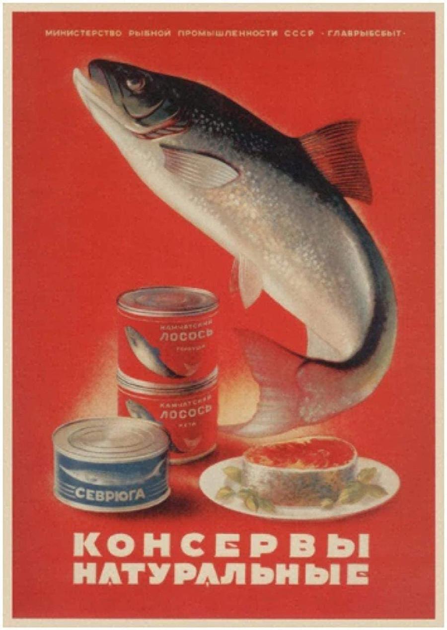 サーモン、ホシチョウザメ。無添加缶詰