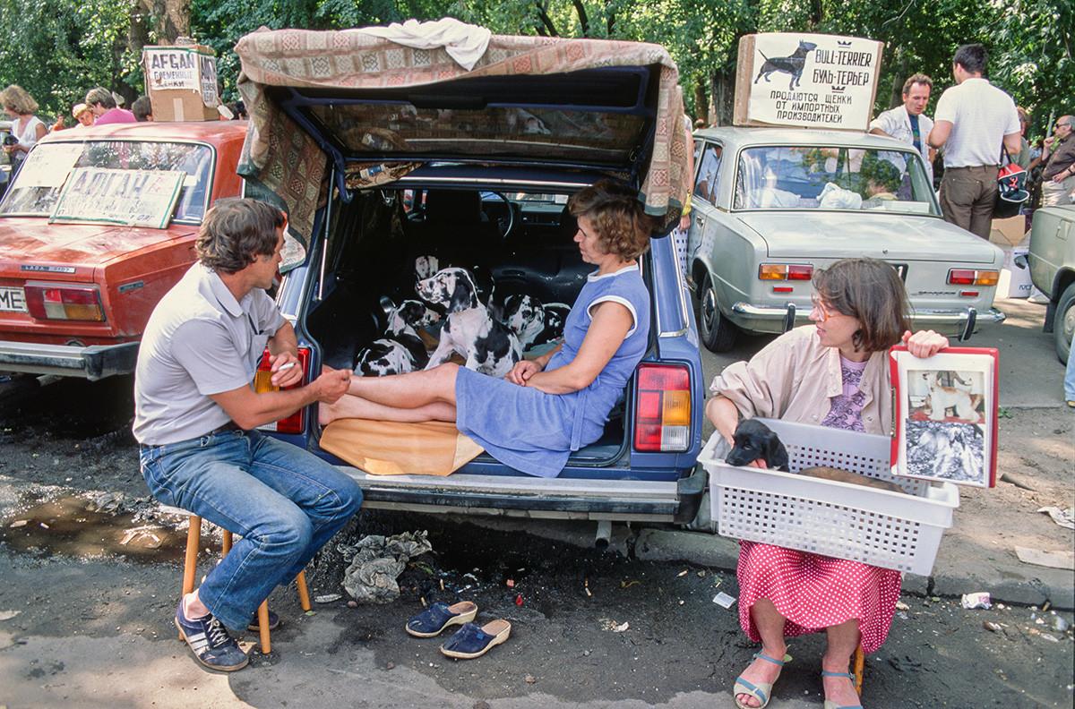 Ein Haustiermarkt.