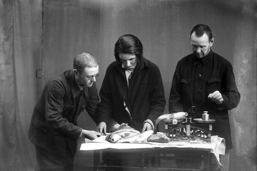 Pemeriksaan ikan, 1931.