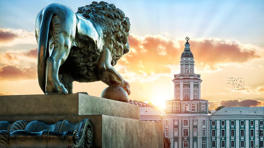 La statua di un leone sull'argine Admiralteiskaja a San Pietroburgo, di fronte alla Kunstkamera, in una sera d'estate