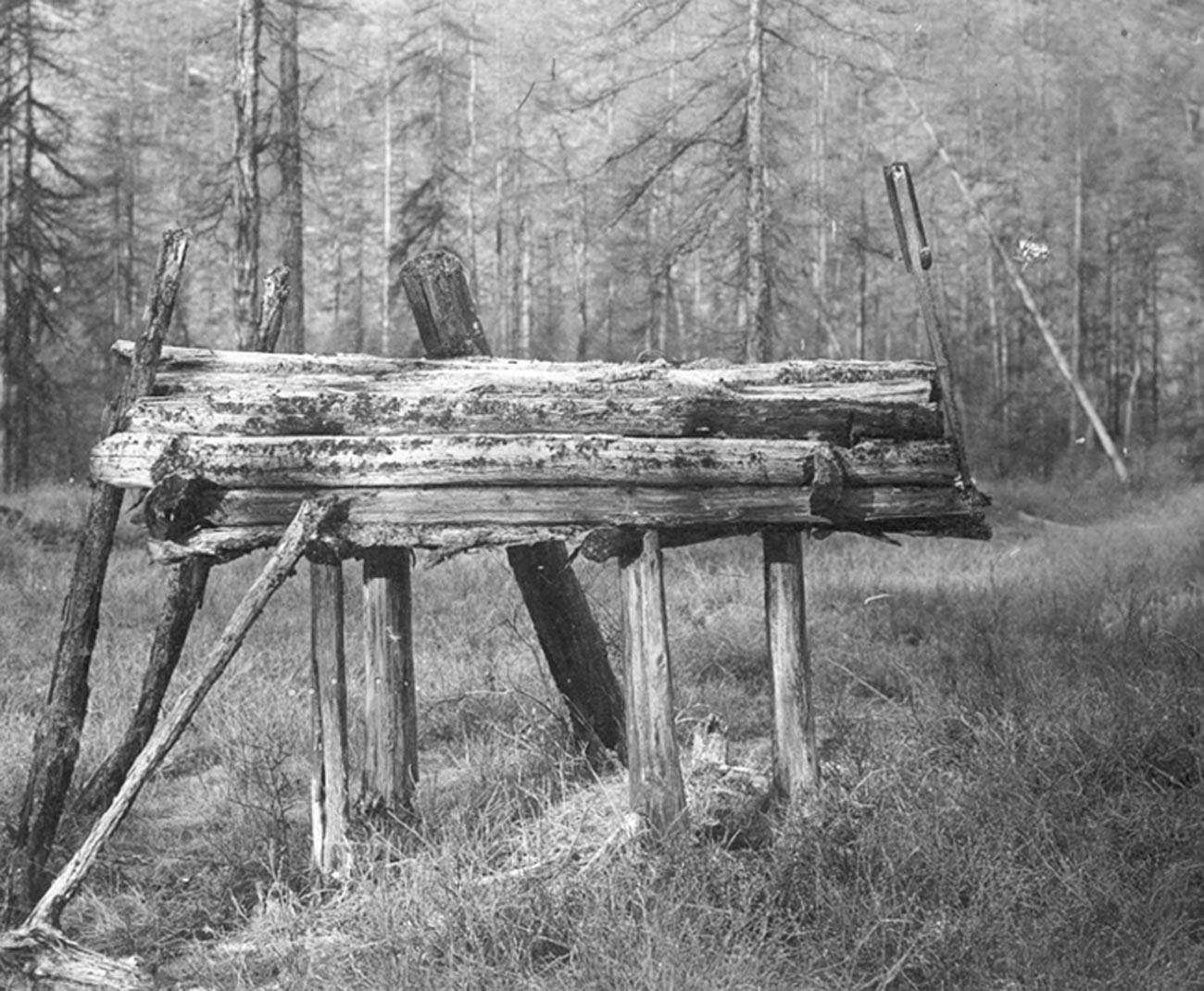 Un entierro sobre el suelo encontrado en un bosque ruso