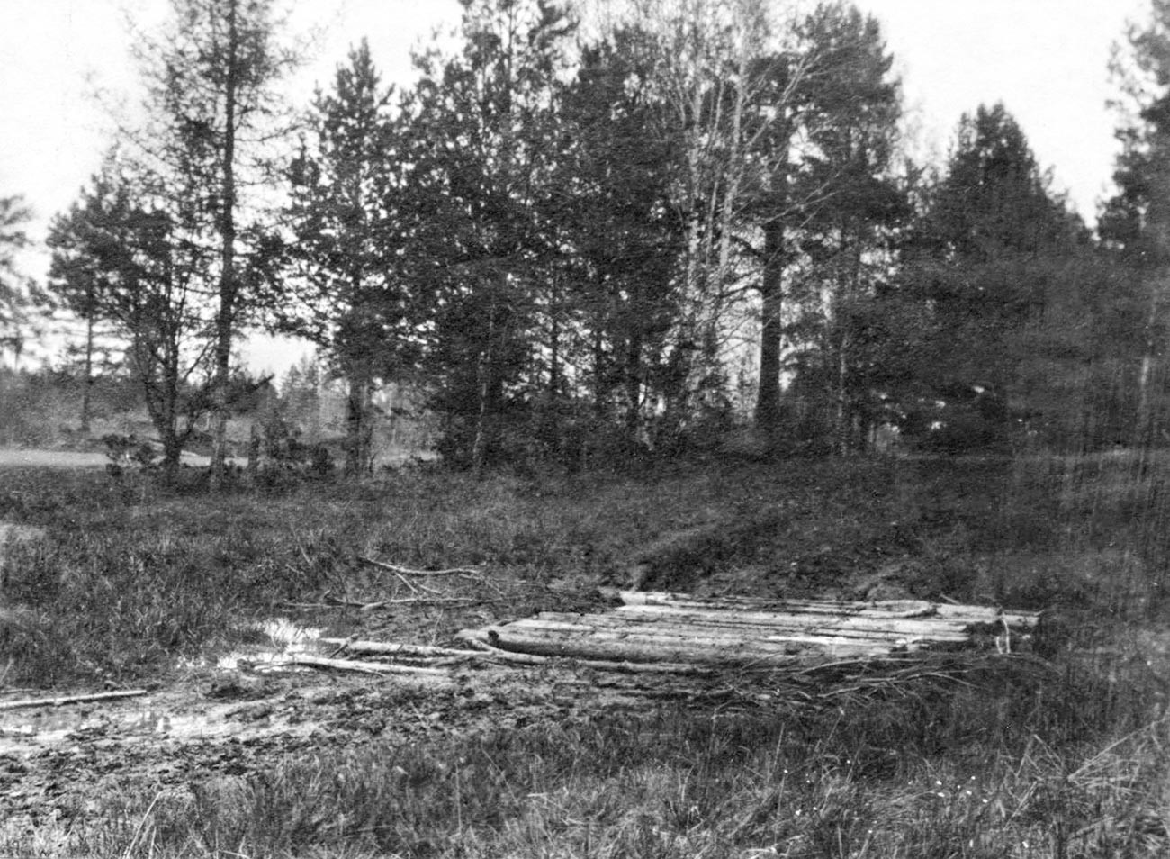 Porosenkov Log, local onde se encontraram os corpos da família.