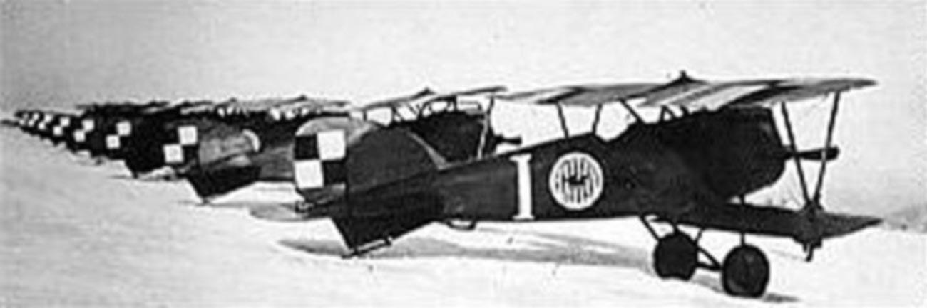 Албатроси D.III (Oef) на 7-а изтребителна ескадрила, кадър с емблемата на ескадрилата