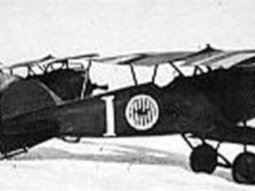Polnische Albatros D.III-Flugzeuge