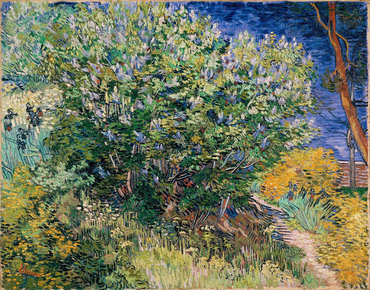 Vincent van Gogh. Lilas du jardin de l'hôpital, mai 1889