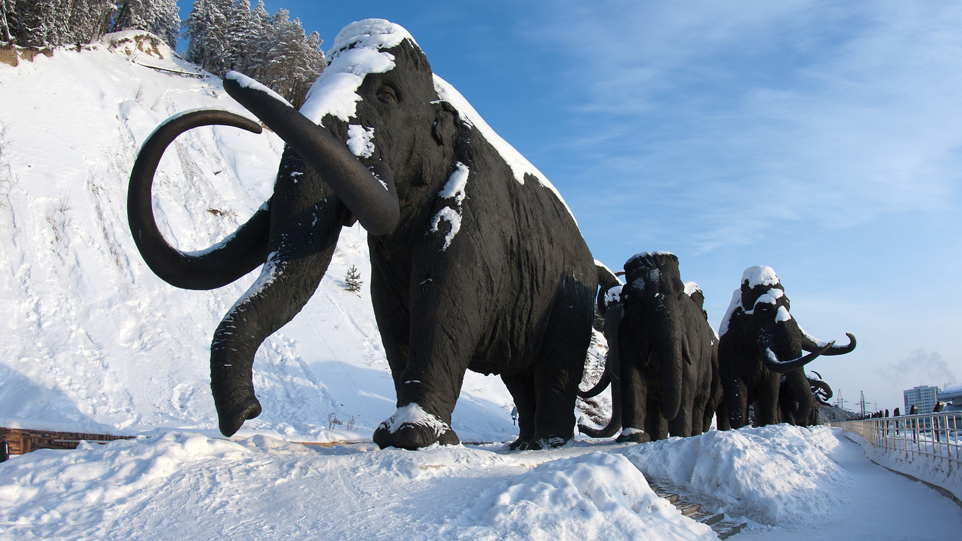 Мамонты в Археопарке Ханты-Мансийска