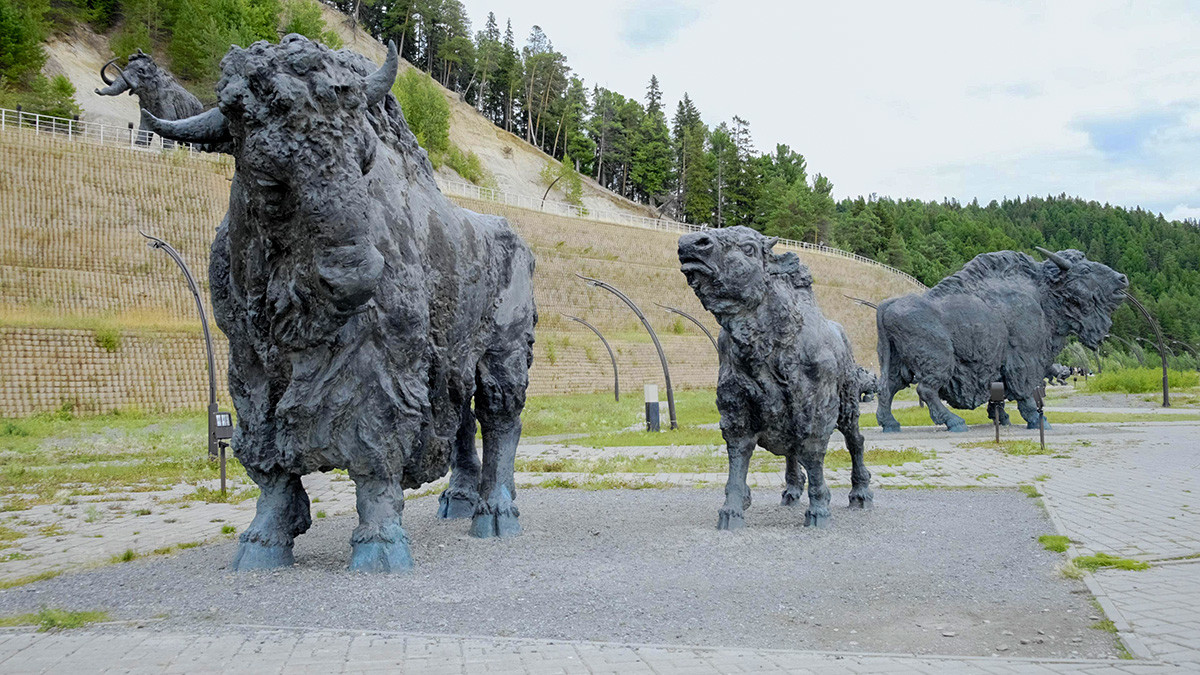 Sculptures of bisons at the Archeopark cultural and tourist complex