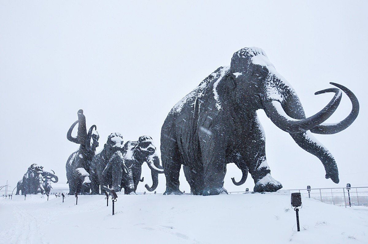 Mammoths at the Archeopark