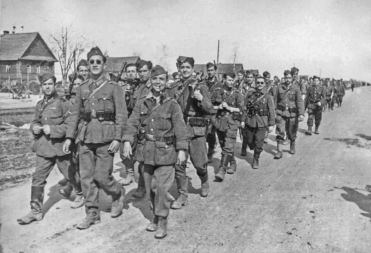 """Volontari spagnoli della 250.Infanterie-Division nazista, nota come División Azul (ovvero """"Divisione Blu"""") durante l'occupazione dell'Unione Sovietica"""