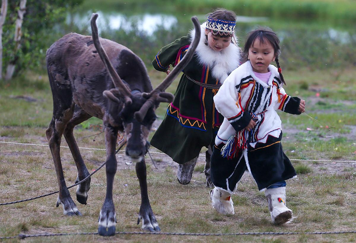 Anak-anak melintas di dekat rusa peliharaan.
