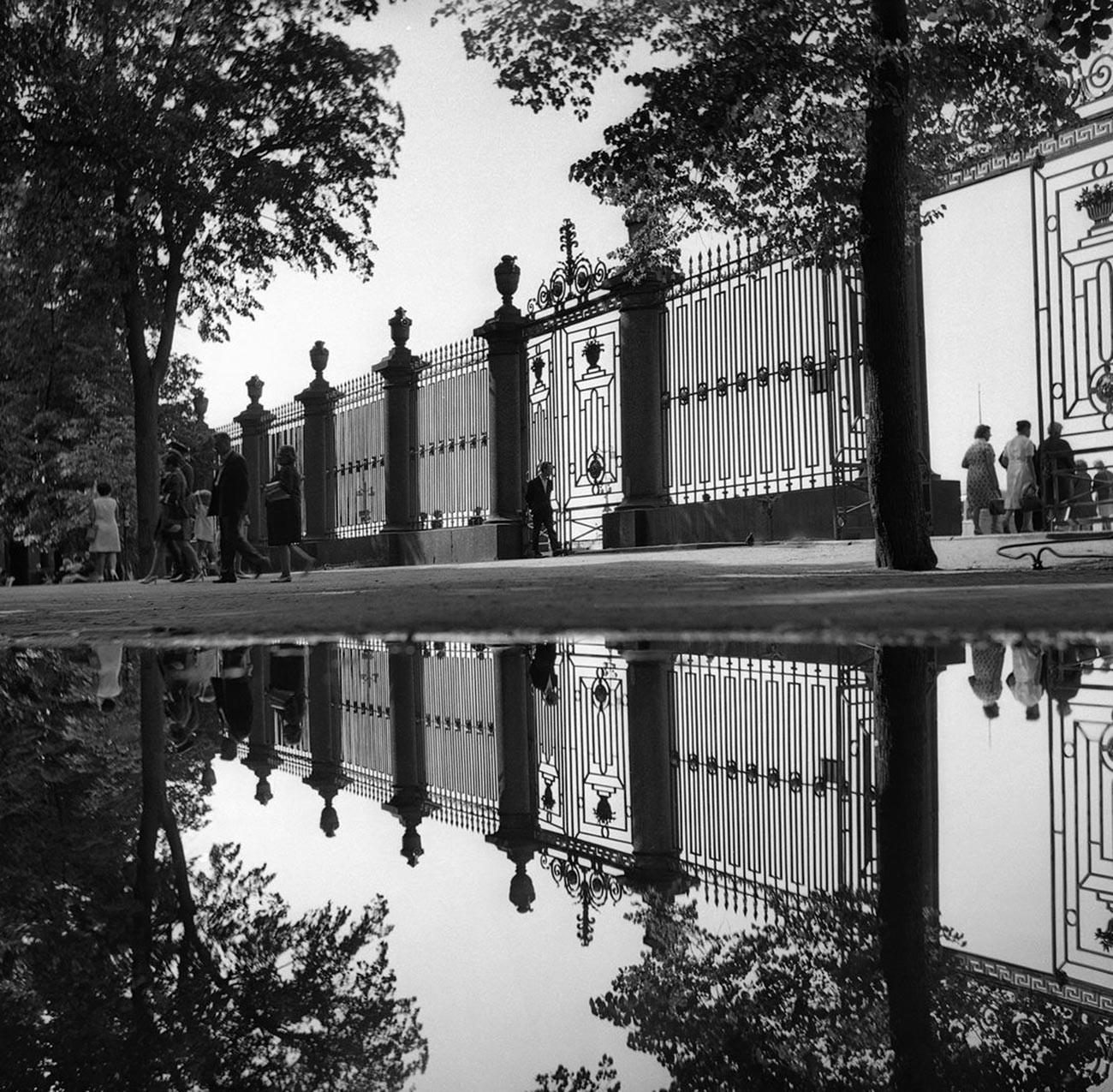 夏の庭園、1970年代