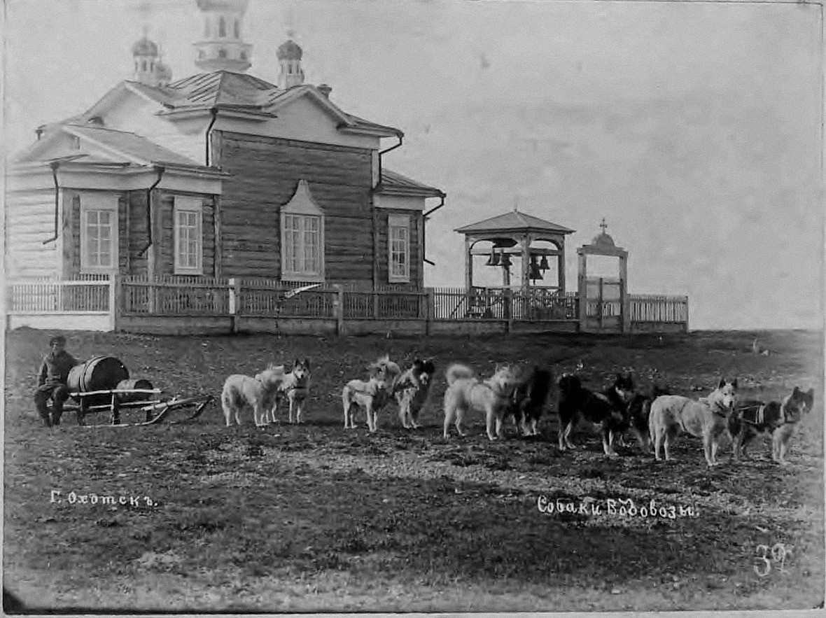 Кучешка запрега на водоносци. Околу 1895 на Амур.