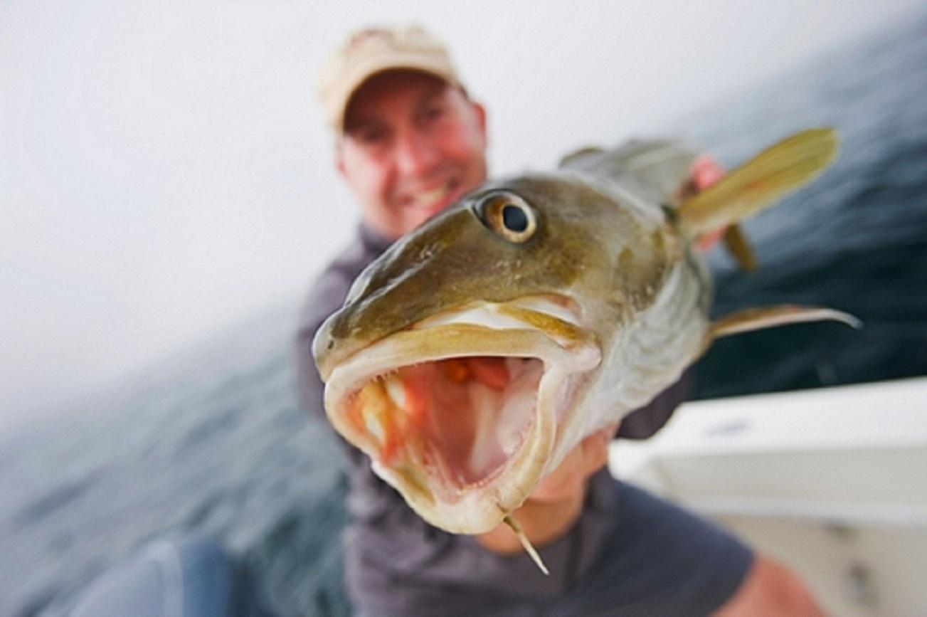 Brasil autoriza importação de pescado russo width=