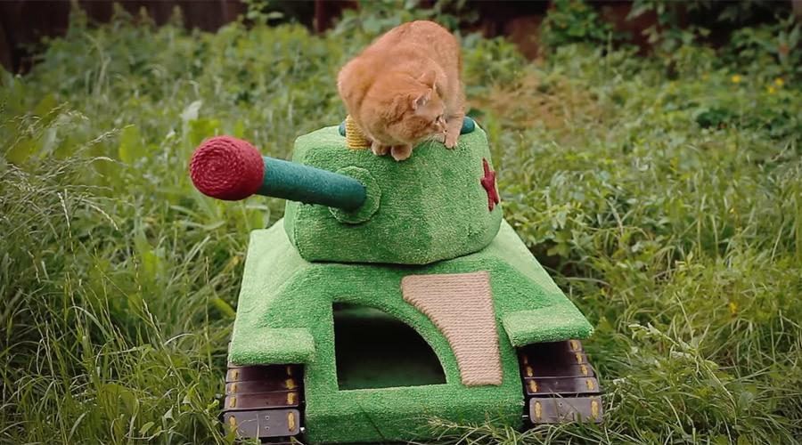 Kucing Siberia Kegirangan Dapatkan Rumah Mainan Berupa Tank T-34