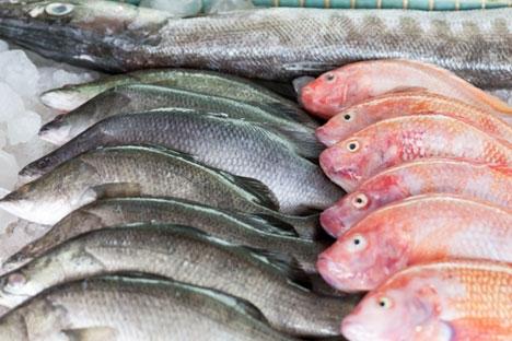 Brasil assina acordo para importação de peixe da Rússia width=