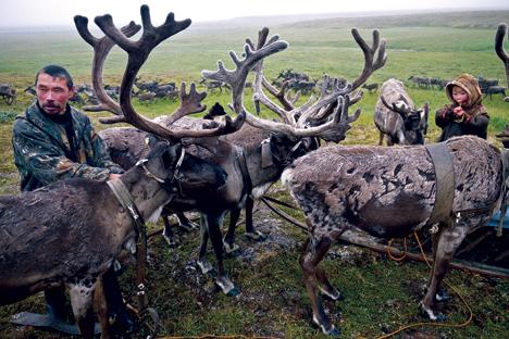 Kehidupan di Utara Jauh Rusia: Ketika Budaya Tradisional Bertemu Budaya Teknokratis