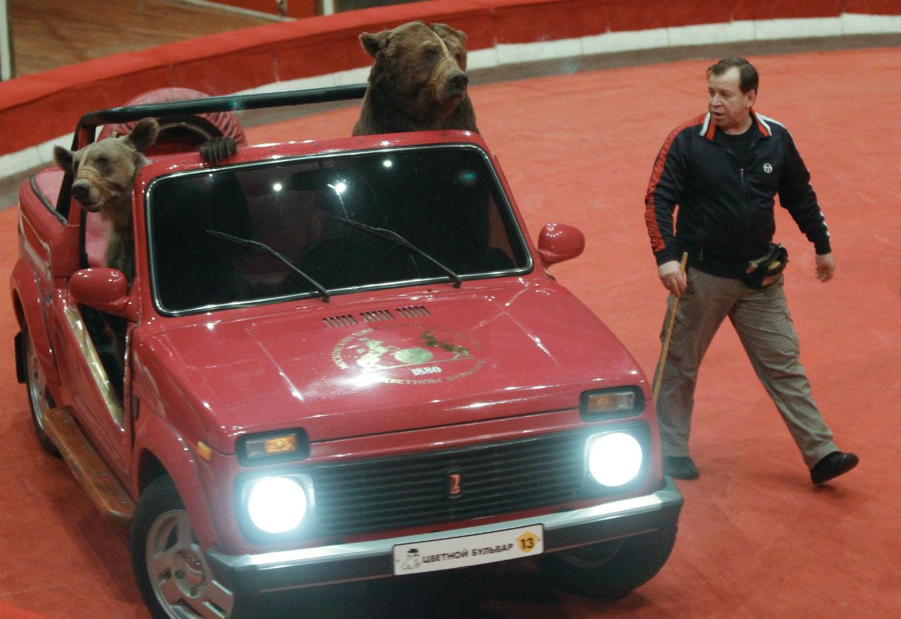 Cirkus na Cvjetnom bulevaru / Aleksej Kudenko/RIA Novosti