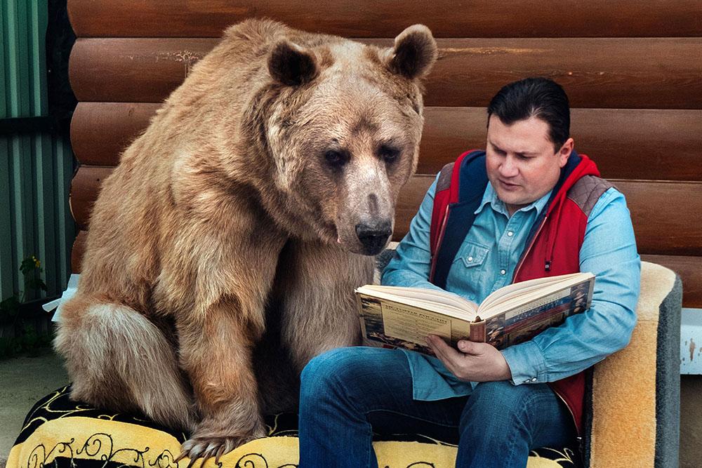 Família que adotou urso de estimação relata experiência width=