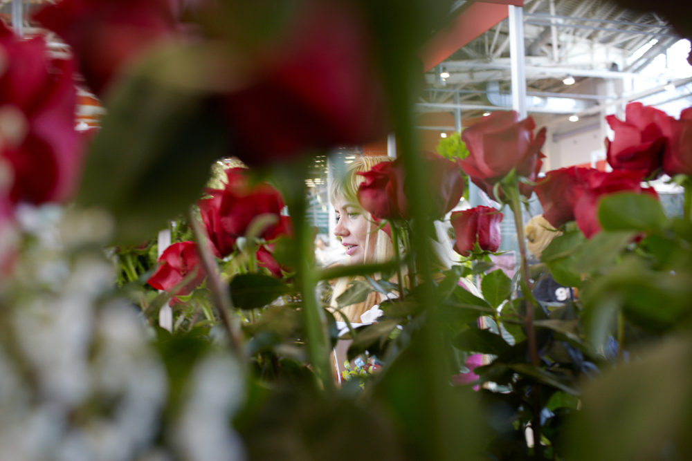 Nevertheless, consumers are willing to wait: imported roses have a more attractive exterior, although they wither more quickly than Russian ones.