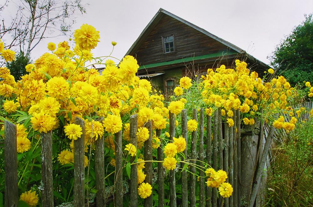 …et à seulement 10 km de l'oblast voisin de Vologda. Il a été fondé en 1582.