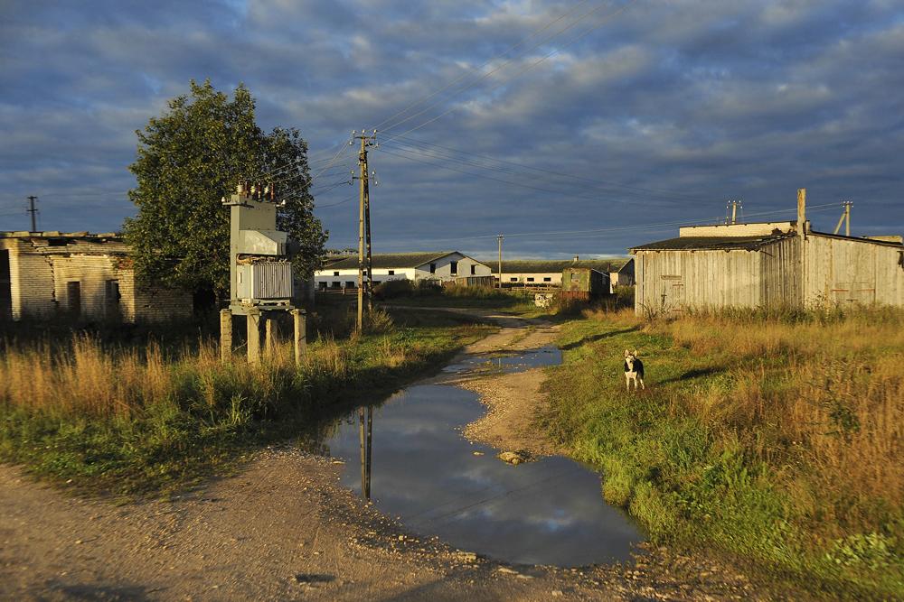 Mintzi est un petit village dans l'une des zones les plus reculées de la région de Khvoïninsk, dans l'oblast de Novgorod, à 300 km de Veliki Novgorod…