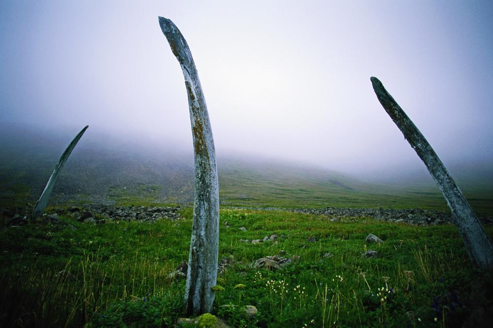 O Caminho dos Ossos de Baleia é um monumento único de origem esquimó em Ittigrane, ilha localizada no Estreito de Seniavin, na península de Tchukotka. A estrutura é formada por duas fileiras de ossos enormes de baleia-da-Groenlândia. A dimensão do caminho, que percorre 500 metros ao longo da costa norte da ilha, e sua complexa estrutura são verdadeiramente surpreendentes.