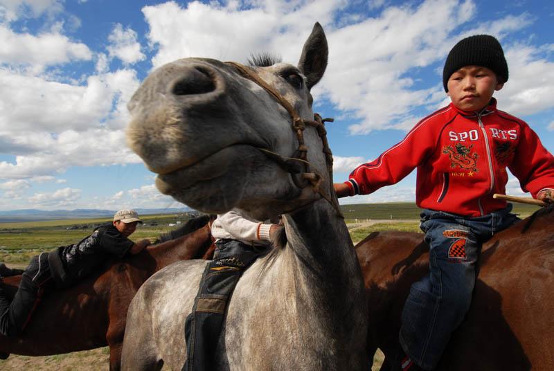 Pour les peuples nomades traditionnels, le cheval n'est pas seulement un moyen de transport au cours de la saison de pâturage et des migrations; c'est une source de viande, de fourrure, et de crin.