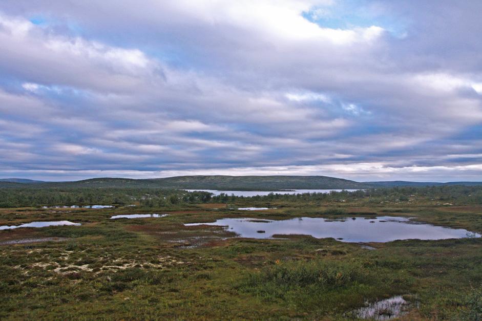 Ici, il est possible de vivre la vie des éleveurs nomades de rennes. Après la fermeture des fermes collectives, beaucoup de gens sont retournés aux bonnes vieilles coutumes et traditions. Aujourd'hui, ils sont les guides les plus expérimentés pour l'environnement rigoureux de la péninsule de Kola.