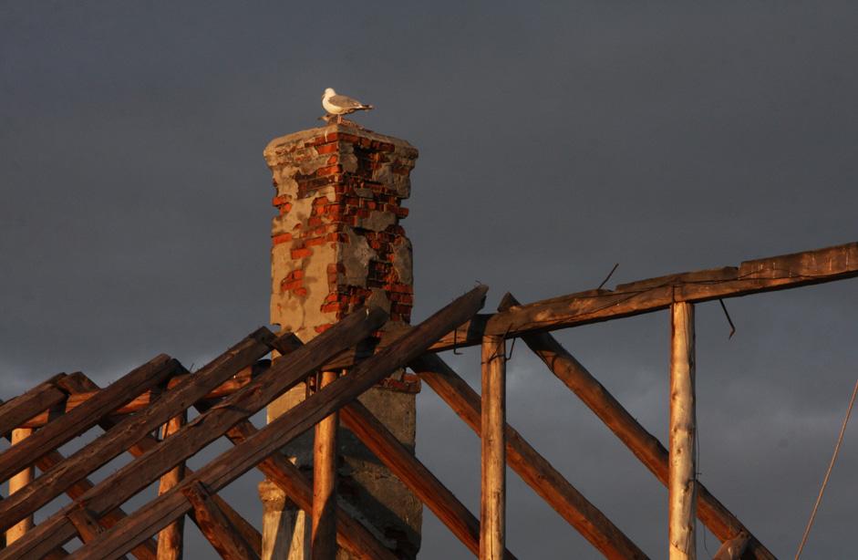 Des toitures effondrées s'ouvrent sur le ciel, laissant pénétrer les aurores de l'Arctique pendant que le bruit grinçant des cadres rouillés effraye les mouettes parties en chasse pour trouver leur dîner.