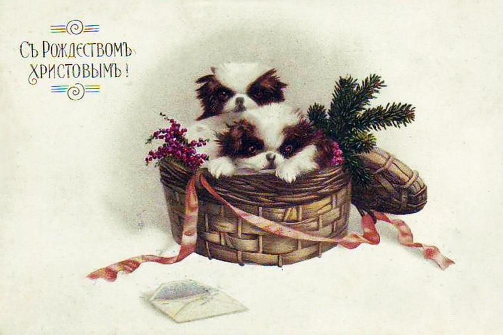 Os primeiros cartões de Natal russos foram impressos para caridade pelo Comitê de São Petersburgo das Irmãs da Cruz Vermelha.