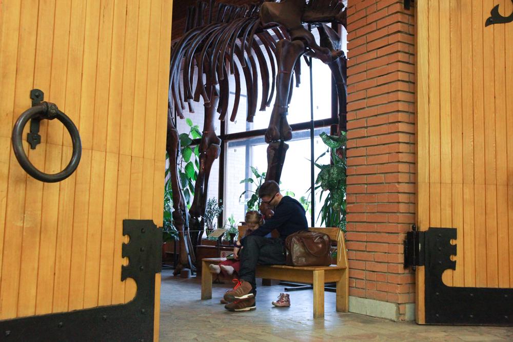 Орловскиот музеј за палеонтологија е еден од најголемите природонаучни музеи во светот.
