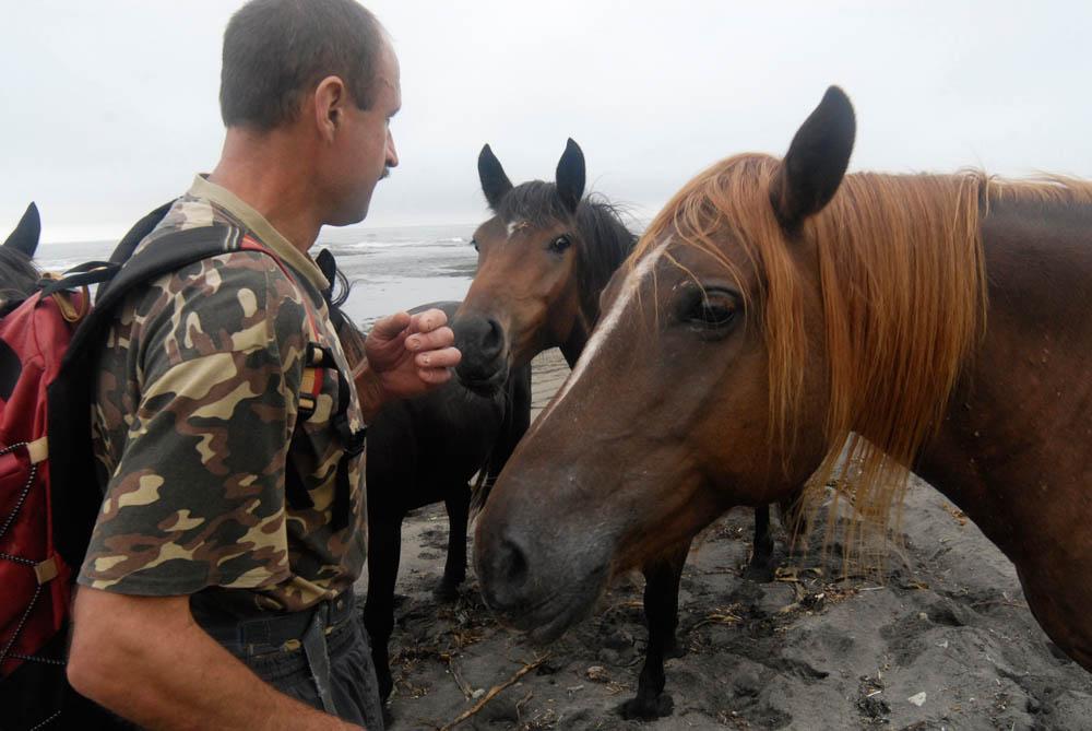 6/12. Просечно стадо састоји се од 30 одраслих коња и 10 ждребади. Годишње се изгуби око 5 коња из разних разлога. Коњи живе под ведрим небом, јер Андреј нема довољно велику шталу да их све смести.