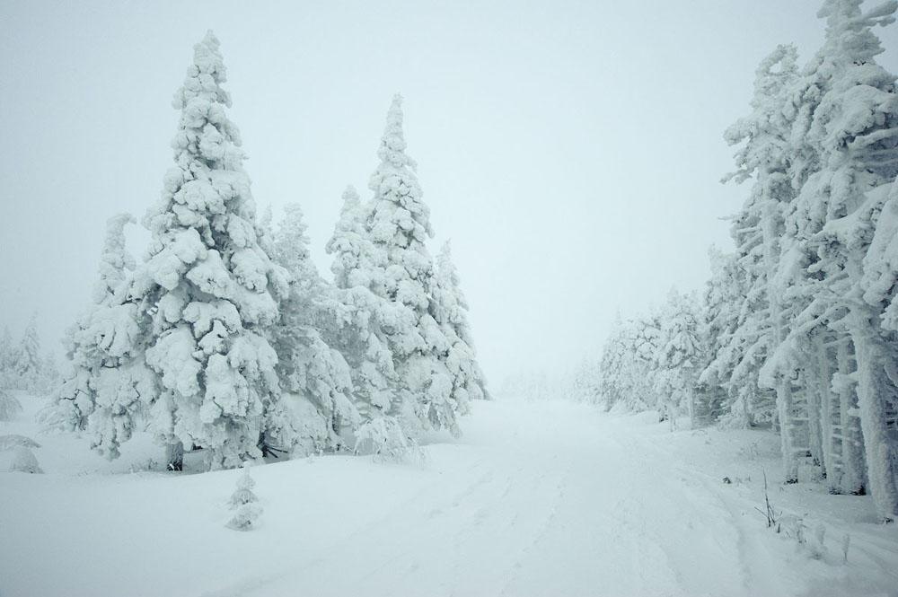 Der Wald von Taganaj ist ein beliebtes Übungsgelände für Gebirgswanderer im Ural, während Anfänger dieses Bergsports an den Felswänden trainieren.
