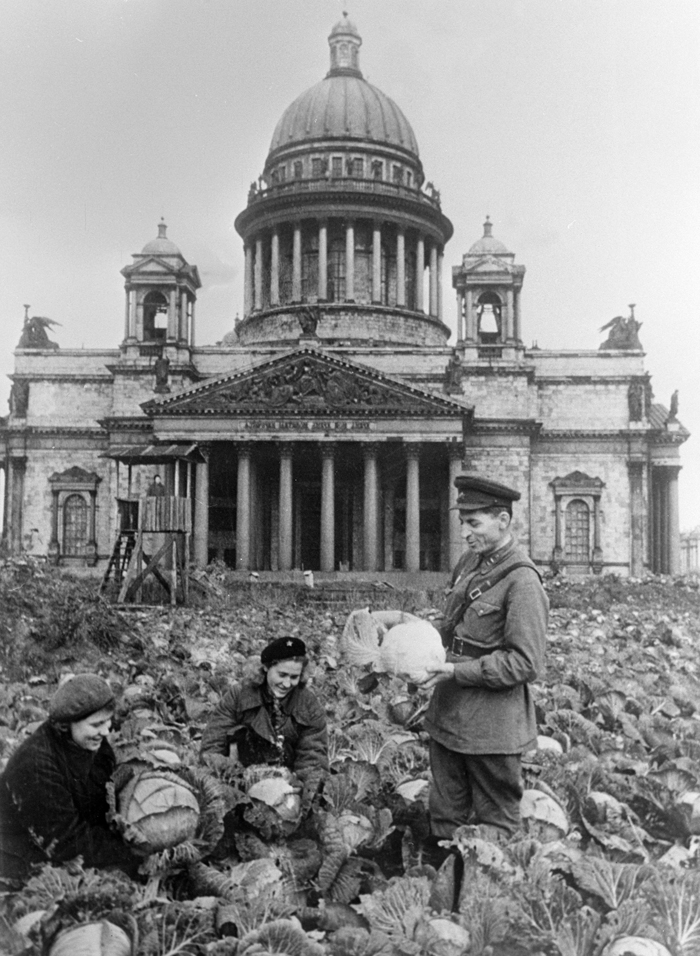 Despite these tragic losses and the inhuman conditions the city's war industries still continued to work and the city did not surrender. // Two Soviet soldiers and a woman gathering cabbage near St. Isaac's cathedral in besieged Leningrad.