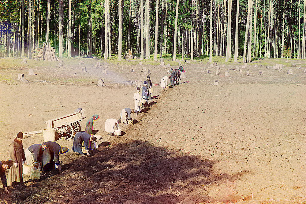 Monks at work. Planting potatoes near Gethsemane Monastery. 1910 // In the course of ten years, Sergey Prokudin-Gorsky was to make a collection of 10,000 photos.