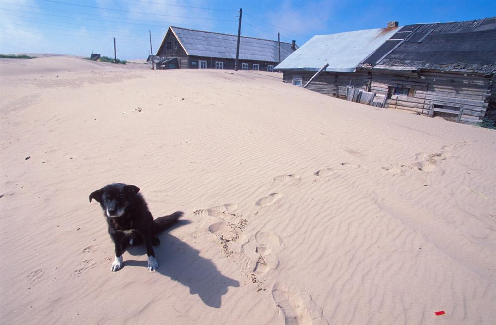 Ils n'ont qu'une seule précaution : ne pas fermer la porte pendant la nuit. Parce que le matin venu, elle peut ne pas s'ouvrir. La moitié du village, 400 habitants, est à l'épicentre d'une vague de sable lente, mais inexorable.