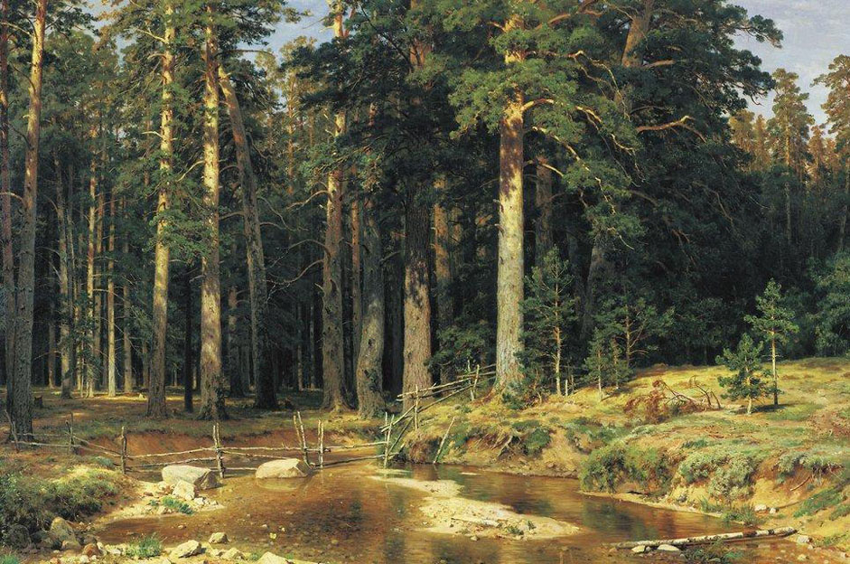 "On the eve of the 20th century, when various trends and directions were emerging and the search was on for new artistic styles, Shishkin continued steadily along his chosen path, creating true-to-life images of Russian nature. ""Ship Grove"" (1898) provided a fitting end to his creative journey. It was the last and conclusive image of his own personal epic. // ""Mast tree grove"", 1898"