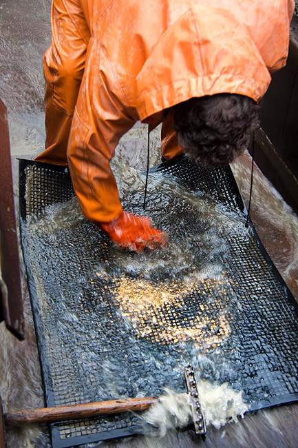 作業者が桶のフタを開けて、金収集を始める。