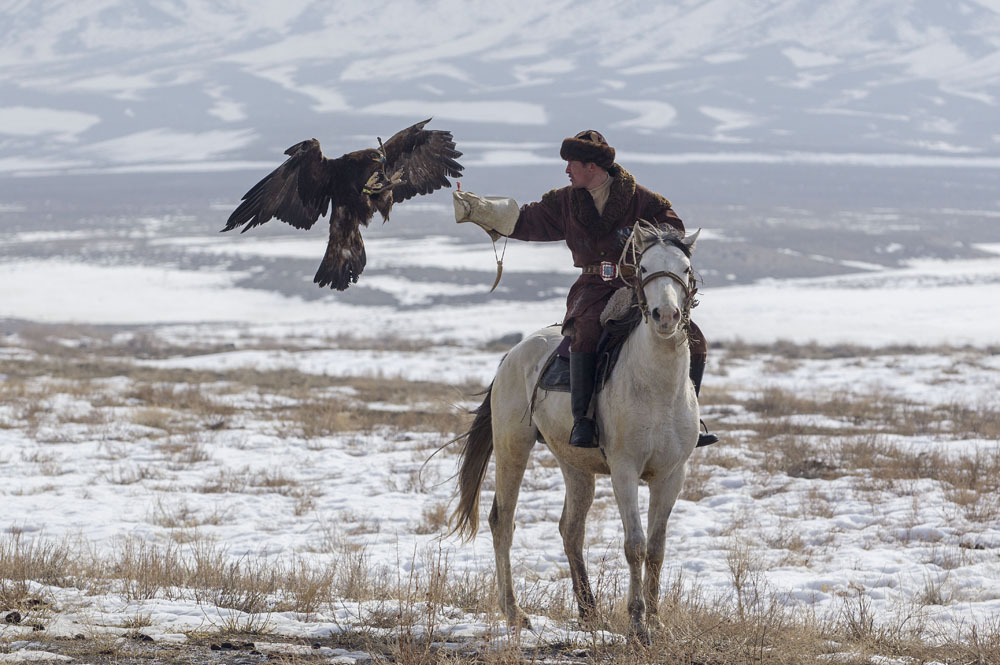狗鷲を飼い慣らしなつかせた狩人は、訓練の第二段階に移る。つまり、鳥と一緒に乗馬し始める。厚い牛皮の手袋を身に着けて、狩人は腕に鳥を捕まらせ、一日に数時間馬に乗る。