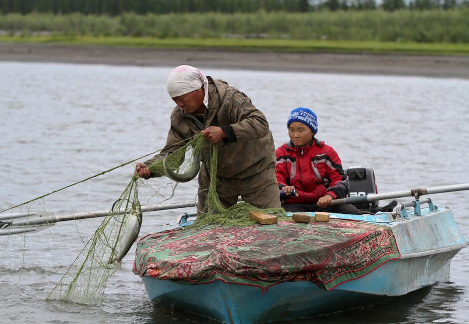 Les activités traditionnelles sur la rivière Indigirka sont la pêche et la transformation du poisson, ainsi que la chasse.