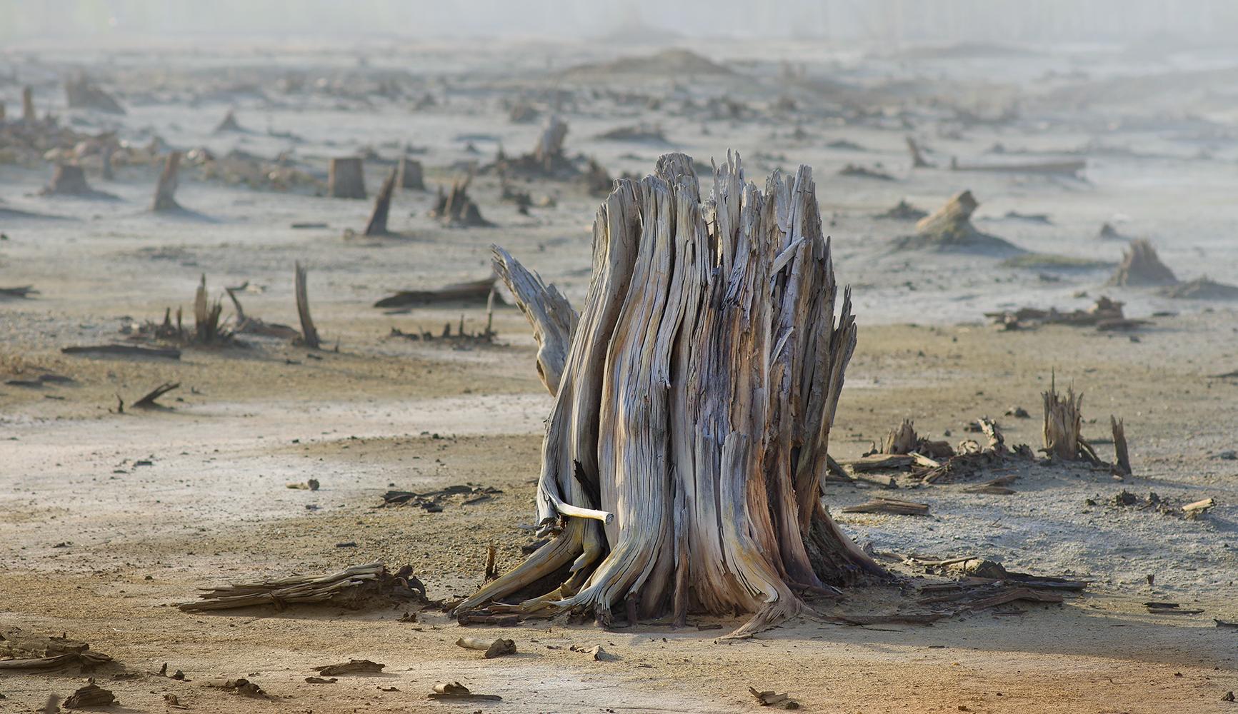 20世紀初めに、カラバシュで銅採掘が 始まった。銅鉱石の採掘と製錬が数十年間続けられた後、街は環境破壊著しい場所に変わった。ソ連時代は環境問題がさほど重視されていなかったため、コンビナートには当初処理施設がなかった。