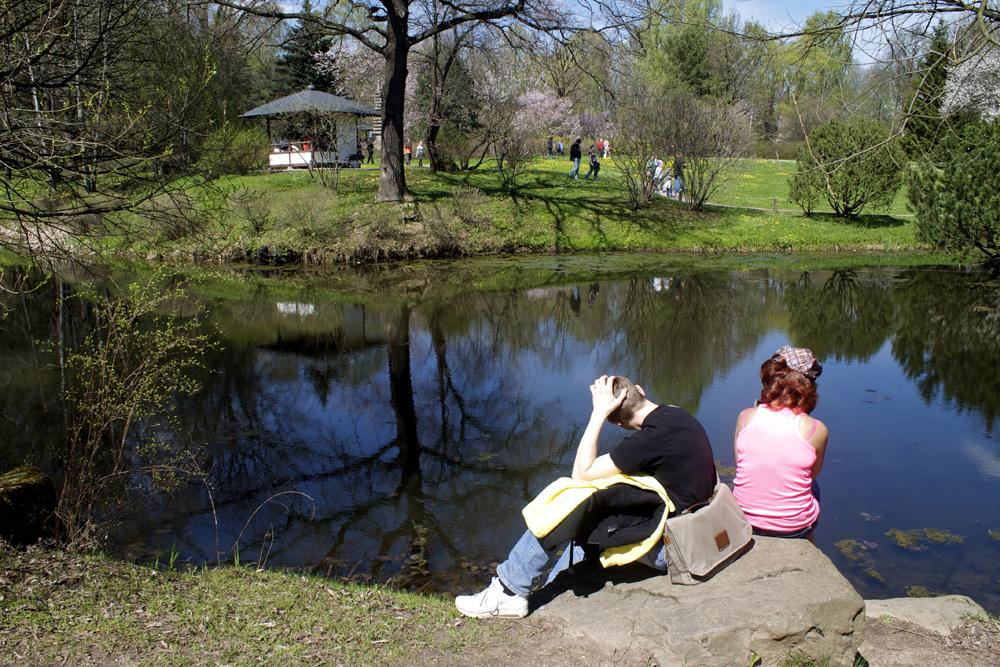 竹の池が最初に建設され、次に13段の石の塔(約200年前の物)が設置された。庭園は最初、お寺にしかつくられなかった。また瞑想を目的としていた。
