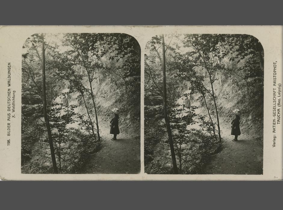 立体鏡付きのセットまたは立体鏡なしで販売される立体画像や特別選集版の画像処理と大量生産は、特に収益性の高い事業となっ た。// 撮影者不明、共同出資出版社 Aristophot、森、「カフカス」シリーズ、19世紀後期〜20世紀初頭、銀塩印画紙