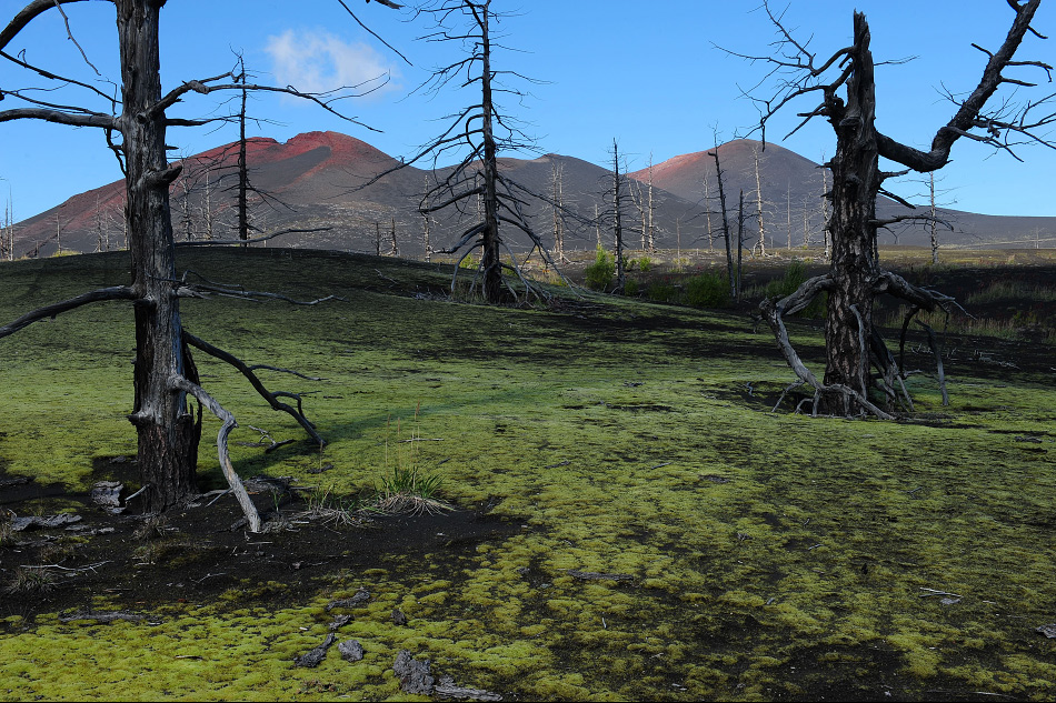 Le volcan Tolbatchik, toujours en activité, a créé aux alentours un terrain très similaire à celui de la lune. Au point que l'Union soviétique put y tester leurs engins avant de les envoyer dans l'espace.