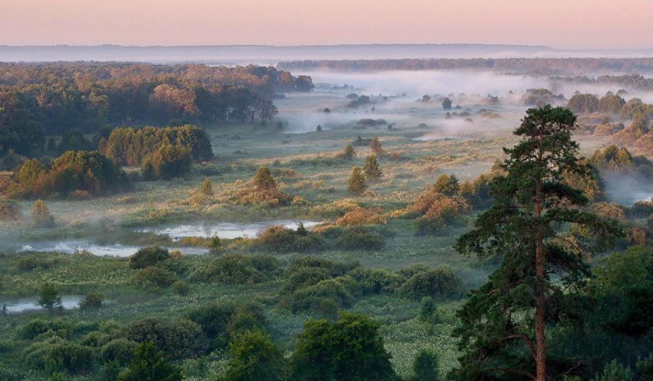 Rešetihinska prostranstva / Snimak oblasti nedaleko od industrijskog grada Rešetihe u Nižegorodskoj oblasti 383 km od Moskve.